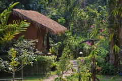 Chiang Dao Hut Resort