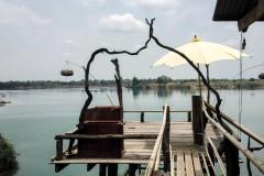 Mekong Bird