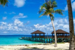 Touch Borneo Resort