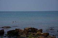 Diving, snorkeling and kayaking on Ko Kut