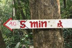 Trekking in Nong Kiaow