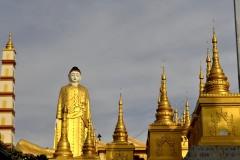 Bodhi Tataung