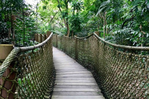 Take your time and get back to nature. Photo taken in or around Sungei Buloh Wetland Reserve, Downtown Singapore, Singapore by Sally Arnold.