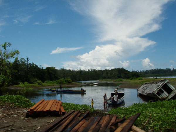 Estuary boats, Halmahera, Indonesia