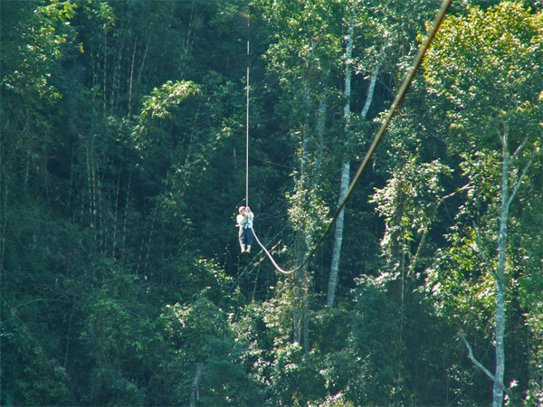 Ziplining at the Gibbon Experience