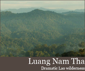 Photo for Luang Nam Tha