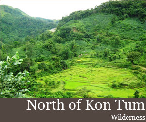 Photo for North Of Kon Tum