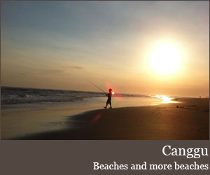 Photo for Canggu