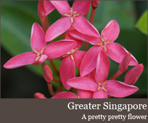 Photo for Greater Singapore
