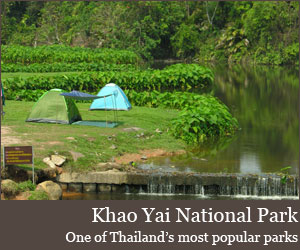 Photo for Khao Yai National Park
