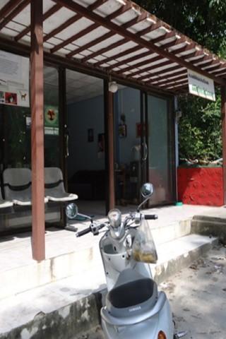 Ko Tao Animal Clinic