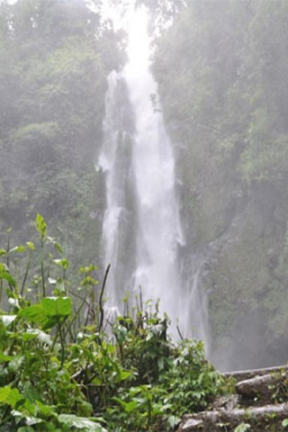Waterfalls around Munduk