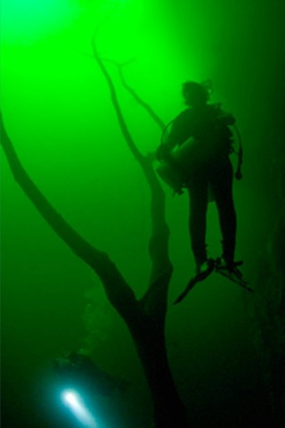 Photo of Diving in Khao Sok