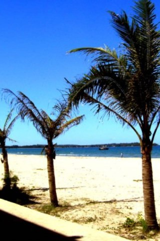 Photo of My Khe Beach