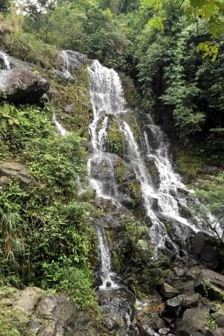 Botanic Garden & Thac Gio Waterfall
