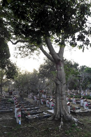 Photo of Hang Duong Cemetery & Vo Thi Sau's grave