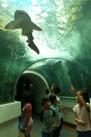 Photo of Khun Krabaen Aquarium