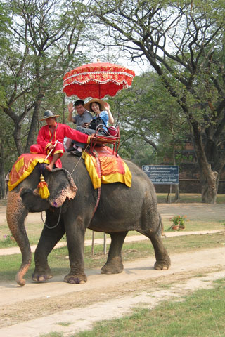 Photo of Elephant rides around the ruins