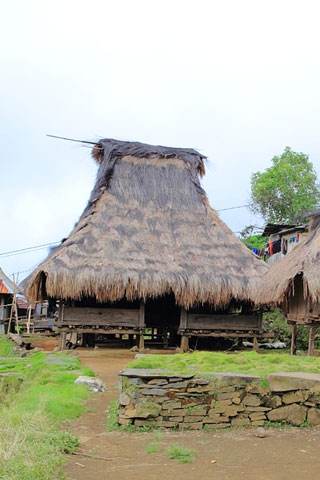 Photo of Pemo village trek