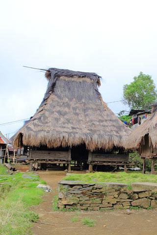 Pemo village trek