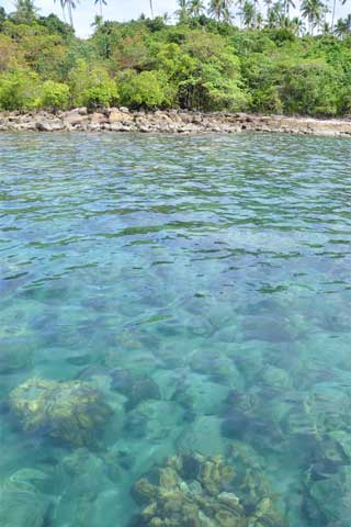 Photo of Snorkelling on Ko Kut