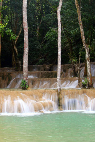Photo of Tad Sae Waterfall