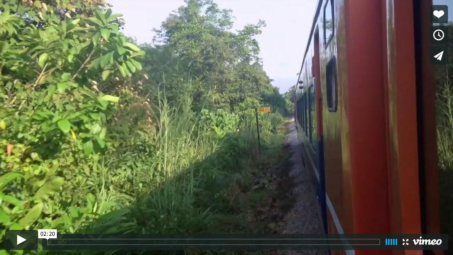View The Jungle Railway on Vimeo