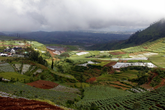 Rolling hills of Dieng