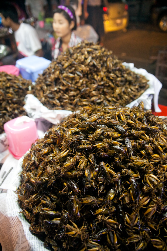 Cricket vendors in Chinatown threaten to let loose all their crickets in protest