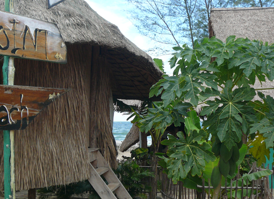 Mushroom Point beach bungalows, Otres Beach, Sihanoukville Cambodia