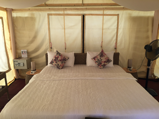The safari tents -- luxury living among the pines.