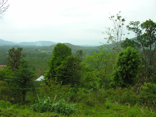Not a bad view from one of Ngao's viewpoints.