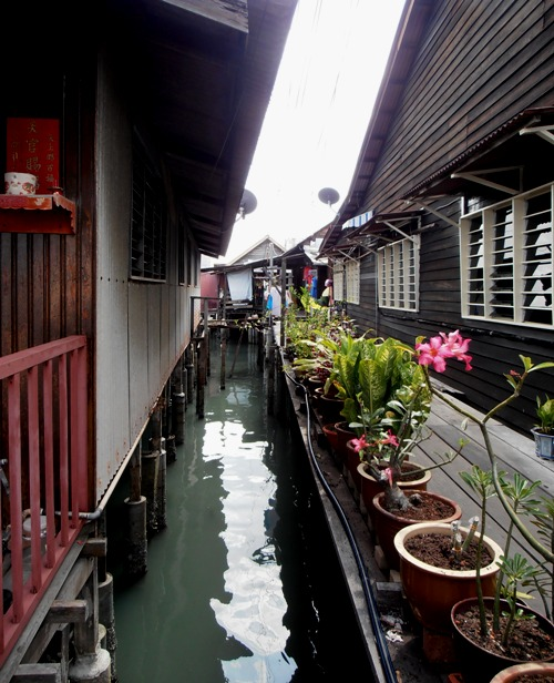 Pot gardens are a particular feature of the Chew Jetty.