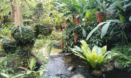 With its streams, ponds, grottoes and lush foliage, you could almost believe that you are in a real butterfly-infested jungle.