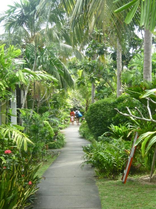 The ultimate tropical walkway.