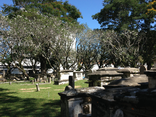 Jumbles of graves beneath the frangipani trees at the Protestant cemetery.