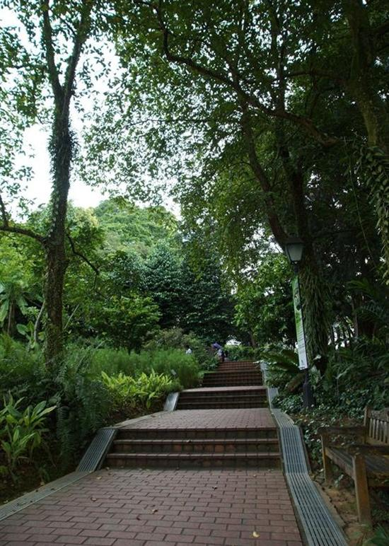 Lush Fort Canning Park overlooks central Singapore.