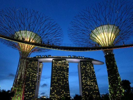 The OCBC Skyway offers a stunning view at dusk.