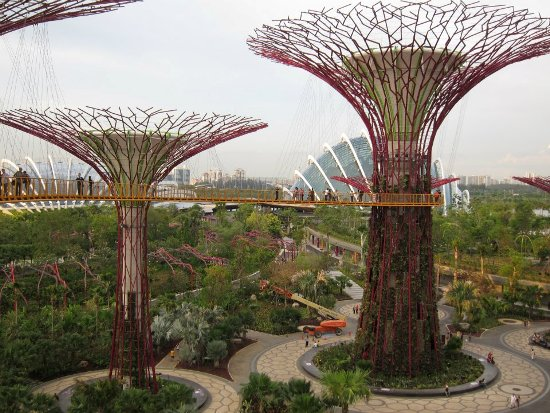 The sParks app is a good guide to many of the parks found in Singapore.  Even if the only park you visit is Gardens by the Bay, download it - it's free.