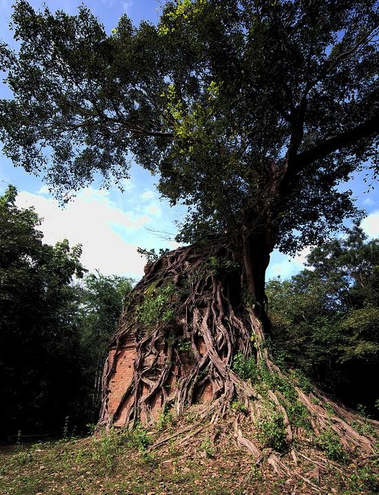 Sambor Prei Kuk or Ishanapura - early Chenla capital in Cambodia
