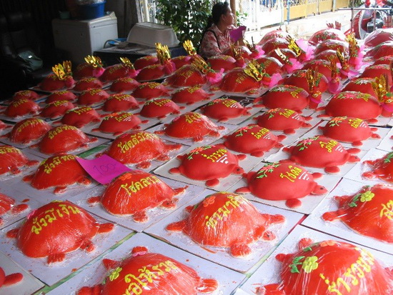 Red turtles at the ready to bring to the shrines.