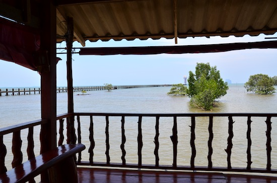 View to the dugong watchtower from Jannai's common room.