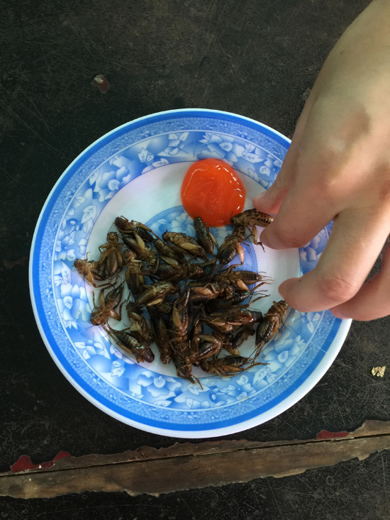 Before you squeal, crickets are high in protein and minerals which can help chronic malnutrition in Southeast Asia.
