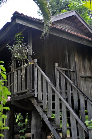 Photo of Doi Farang Resort