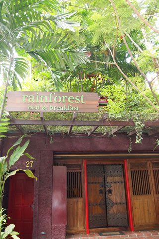 Rainforest Bed & Breakfast