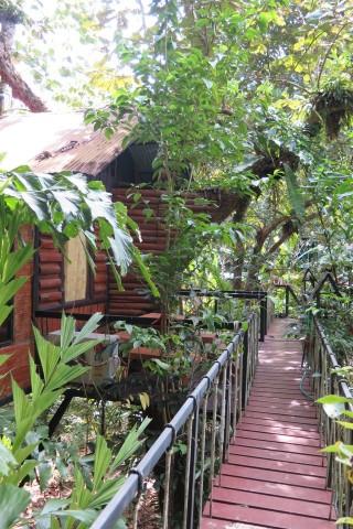 Khao Sok Tree House Resort