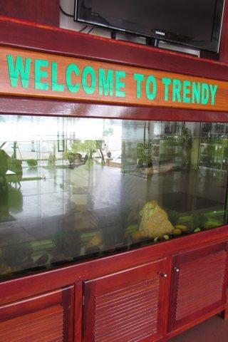 Photo of Trendy Hotel
